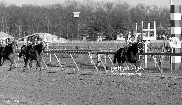 Larry Morris TWP Laurel Park horse track 8th race at Laurel this afternoon #6 horse Lujosa wins the eighth race at Laurel LtoR 'Mercedes Melody' #2...