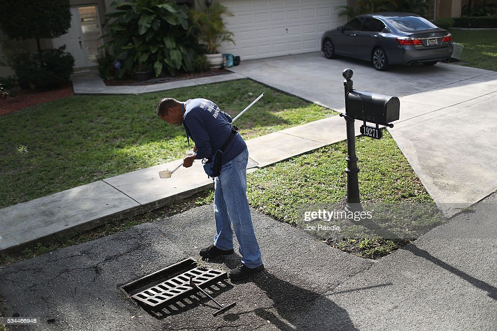 Larry Smart, a Miami-Dade County mosquito control inspector, looks for signs of mosquito larva in the dipper he used to take a sample of water found in a drainage ditch as he works on eradicating them as the county continues to be proactive in fighting a possible Zika virus outbreak on May 26, 2016 in Miami, Florida. Florida Health officials indicate the statewide total of people infected by the disease is 158 with all of Florida's cases being acquired by people traveling outside the country.