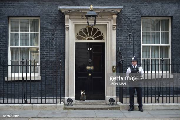 Larry the Downing Street cat sits at the door of 10 Downing Street as a police officer stands guard in London on September 10 2015 AFP PHOTO / LEON...