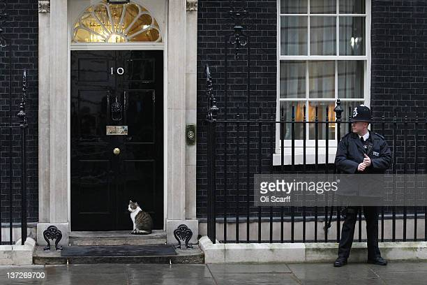 Larry the Downing Street cat waits outside the door to Number 10 on January 18 2012 in London England A spokesman for Number 10 has revealed that...