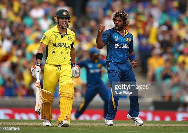 Lasith Malinga of Sri Lanka celebrates after taking the wicket of David Warner of Australia during the 2015 ICC Cricket World Cup match between...