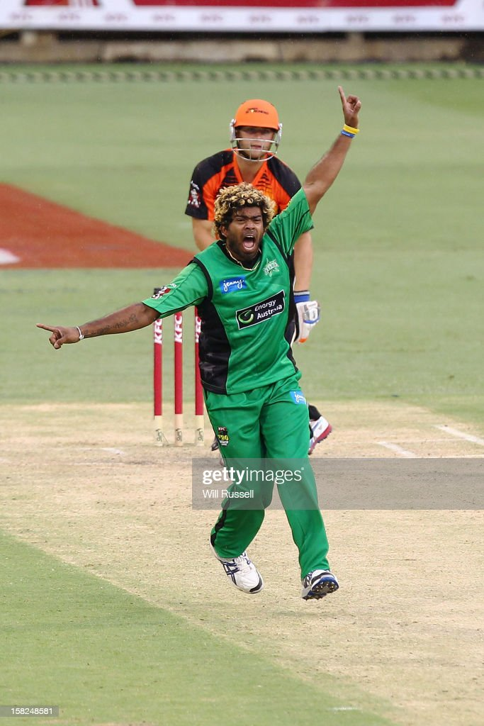 Lasith Malinga of the Stars celebrates taking the wicket of Tom Triffitt of the Scorchers during the Big Bash League match between the Perth Scorchers and the Melbourne Stars at WACA on December 12, 2012 in Perth, Australia.