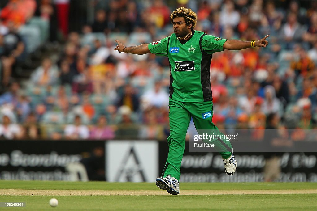 Lasith Malinga of the Stars celebrates the wicket of Marcus North of the Scorchers during the Big Bash League match between the Perth Scorchers and the Melbourne Stars at WACA on December 12, 2012 in Perth, Australia.