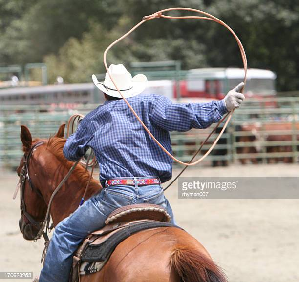 Lasso at the Rodeo