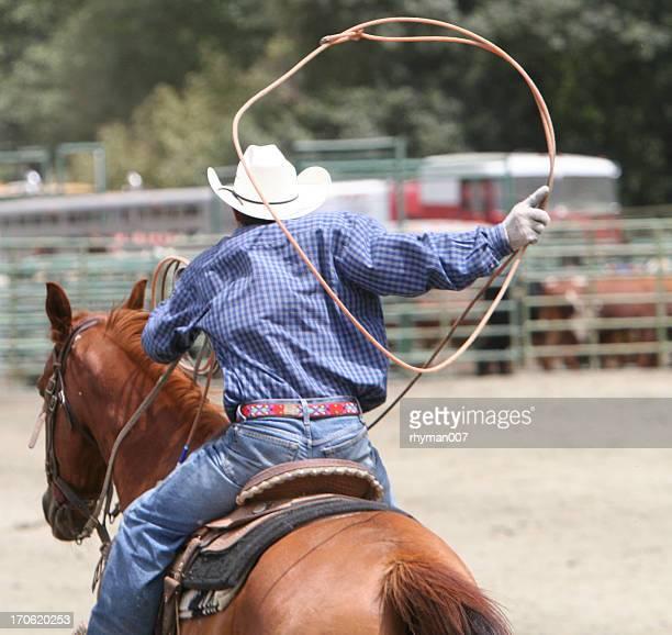 Lasso au Rodeo