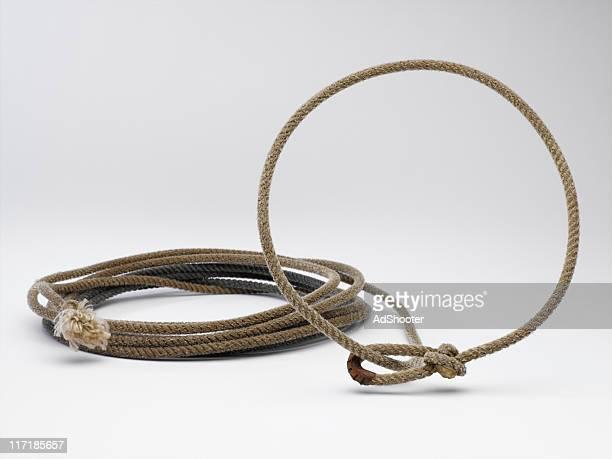 Lasso corde