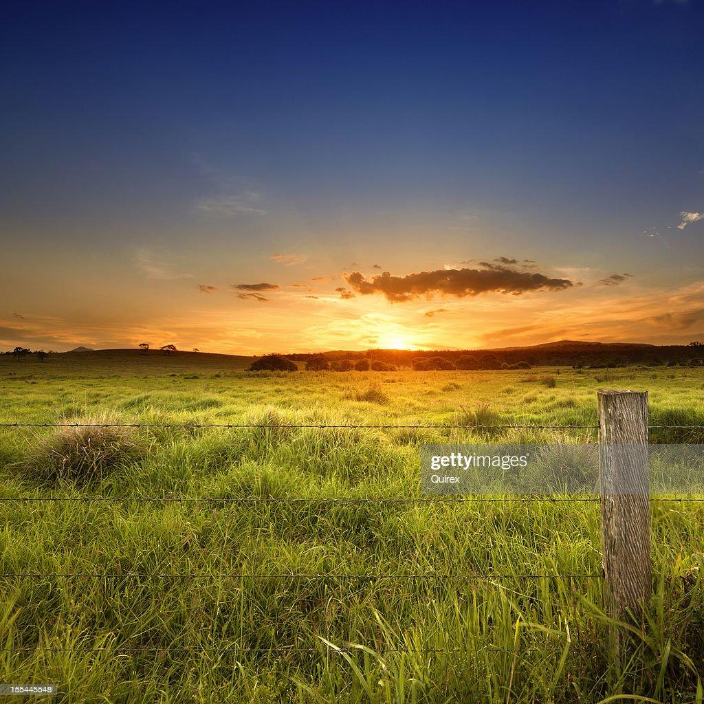 Last light over field : Stock Photo