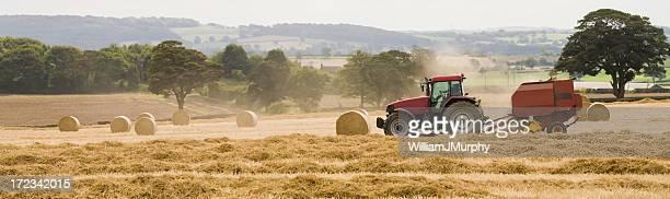 Last Straw (farming, agriculture, harvest)