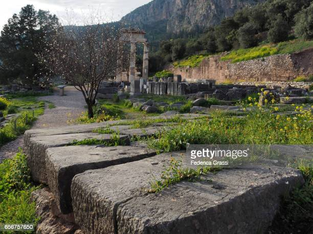 Late Afternoon At The Ruins Of Athena Pronea Sanctuary In Delphi