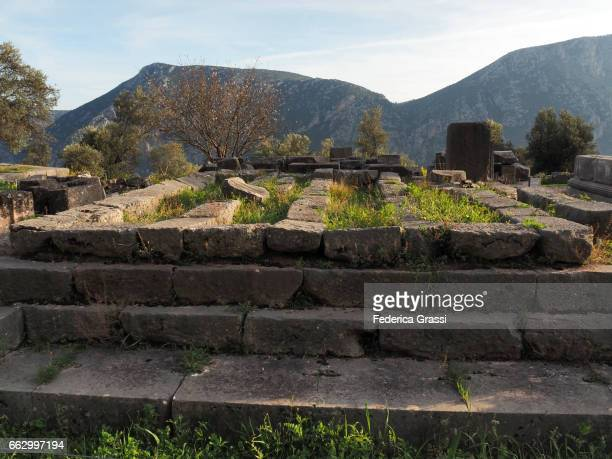 Athene Stock Photos and Pictures  Getty Images