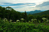 Late Evening along the Blue Ridge Mountains from the Blue Ridge Parkway in Western North Carolina.