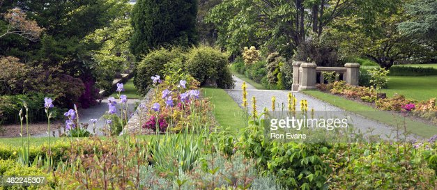 Late Spring Garden Stock Photo Getty Images