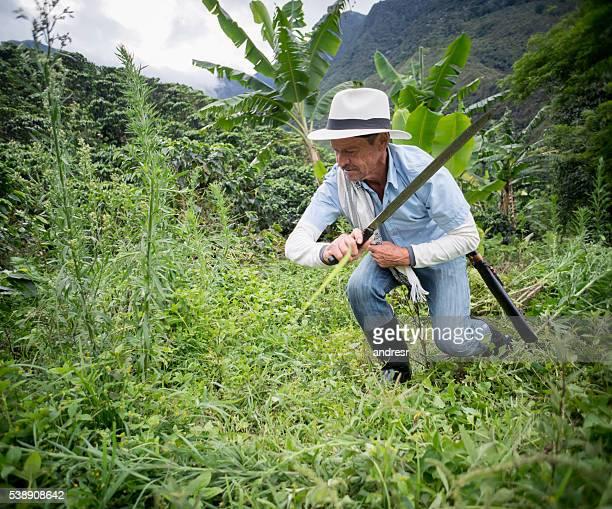 Latin American farmer working the land