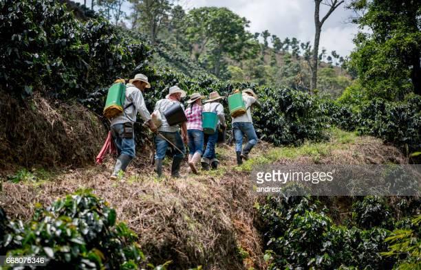 Latin American farmers working at a coffee farm