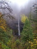 Misty Morning at Latourell Falls, Oregon