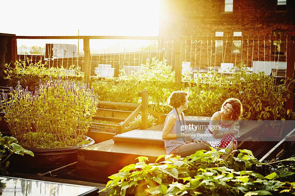 Laughing female friends sitting in rooftop garden