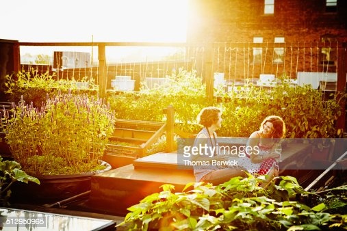 Laughing female friends sitting in rooftop garden : Stock Photo