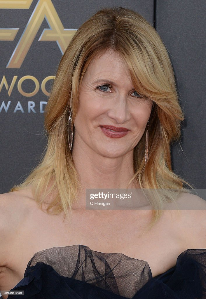 Laura Dern attends the 18th Annual Hollywood Film Awards at The Palladium on November 14, 2014 in Hollywood, California.