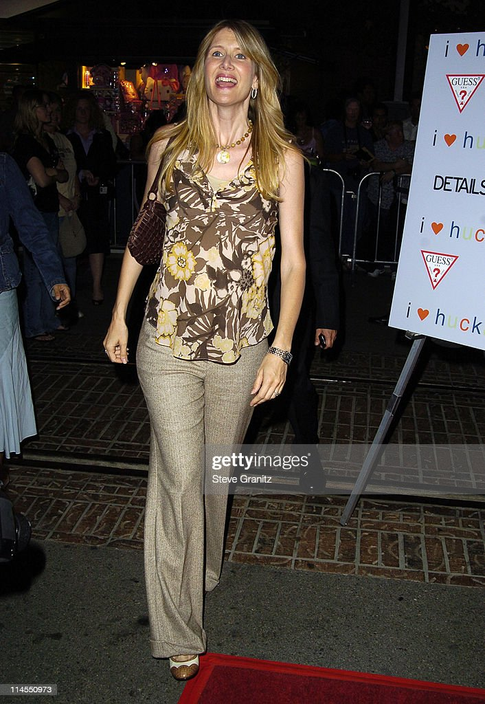 Laura Dern during 'I Heart Huckabees' Los Angeles Premiere - Arrivals at The Grove in Hollywood, California, United States.
