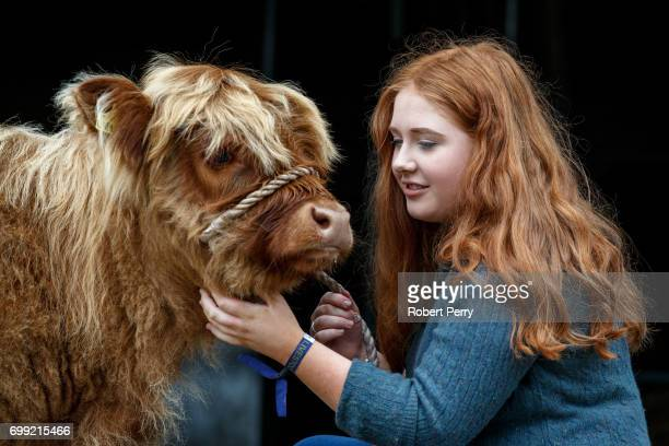 Laura Hunter from Barnhill Farm Shotts with a Highland calf before the 177th Royal Highland Show on June 21 2017 in Edinburgh Scotland The Royal...