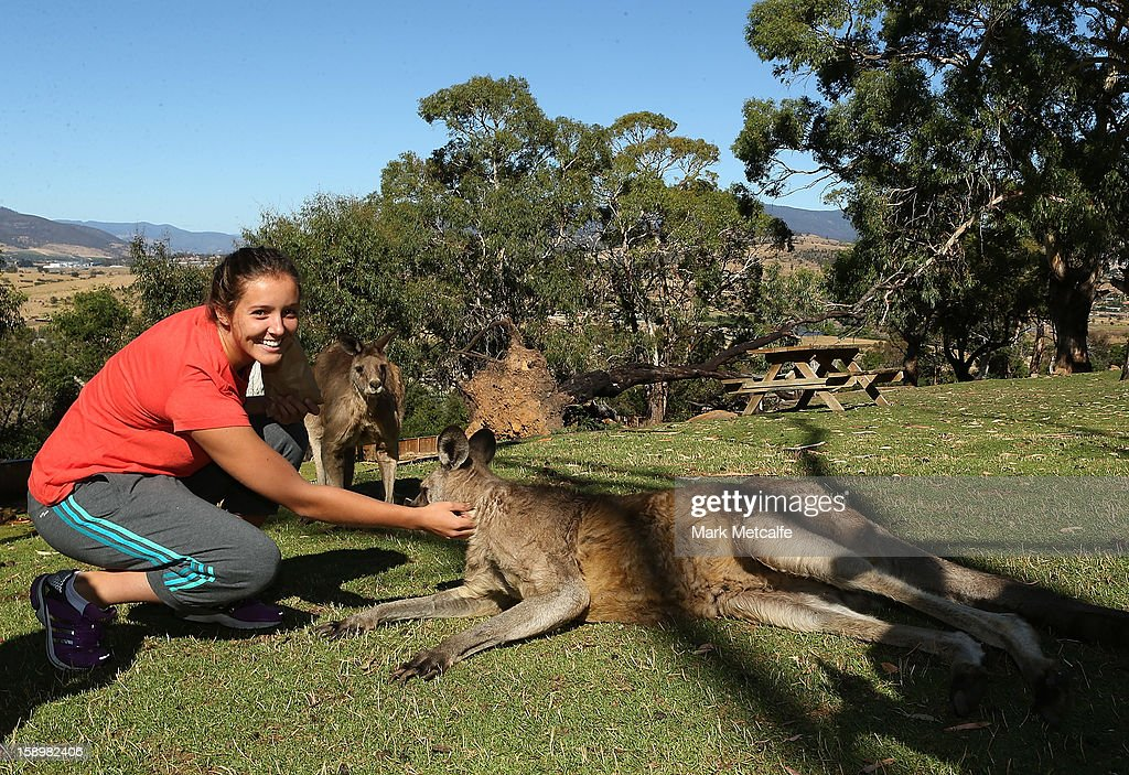 Laura Robson of Great Britain feeds a kangaroo at Bonorong Wildlife Sanctuary during day two of the Hobart International at Domain Tennis Centre on January 5, 2013 in Hobart, Australia.