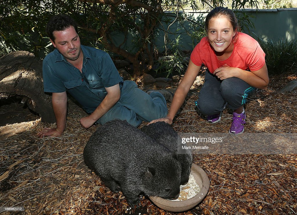 Laura Robson of Great Britain poses with Wombats on a visit to Bonorong Wildlife Sanctuary during day two of the Hobart International at Domain Tennis Centre on January 5, 2013 in Hobart, Australia.