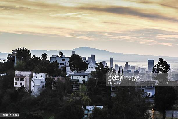 Laurel canyon, Hollywood Hills Skyline