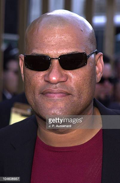 Laurence Fishburne during Osmosis Jones Premiere at Egyptian Theater in Hollywood California United States