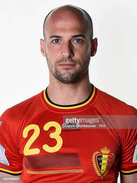 Laurent Ciman of Belgium poses during the Official FIFA World Cup 2014 portrait session on June 11 2014 in Sao Paulo Brazil