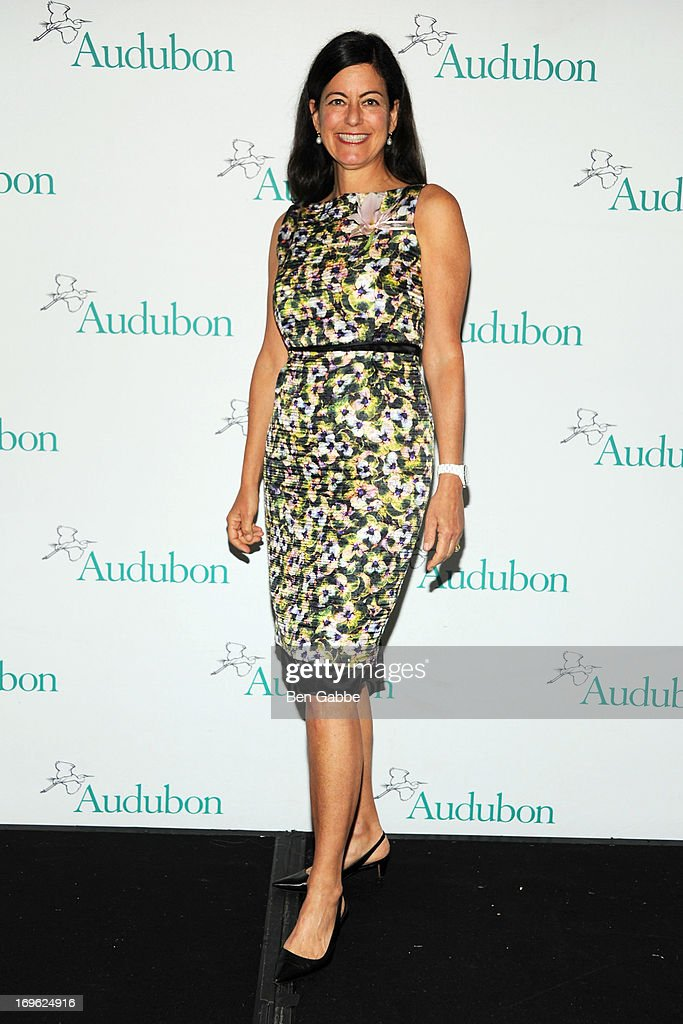 Laurie David attends The National Audubon Society 10th Anniversary Women in Conservation Luncheon on May 29, 2013 in New York, United States.