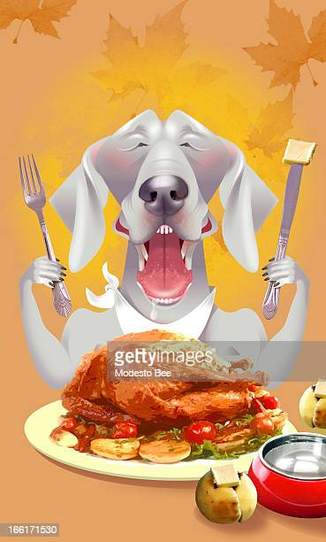 Laurie McAdam color illustration of a hungry Weimaraner dog holding knife and fork aloft as he prepares to eat a turkey can be used with stories...