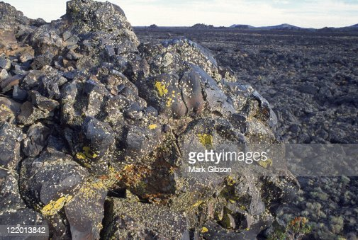 Lava and lichen, Craters of the Moon, ID