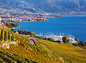 Lavaux vineyards near Geneva Lake, with most popular resorts on Swiss Riviera - Vevey and Montreux on the background