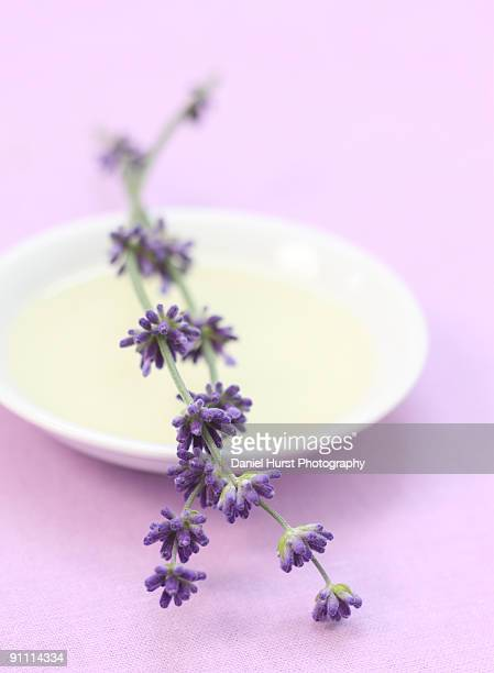 Lavender and bowl of lavender oil