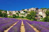 Lavender field with a small town in Provence