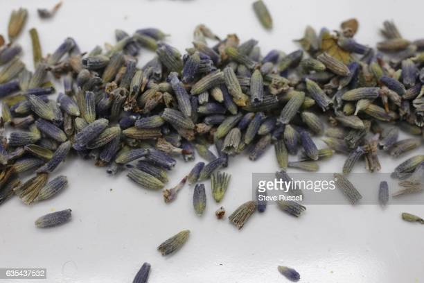 TORONTO ON FEBRUARY 7 Lavender Ingredients for blending your own tea include lavender rose leaves orange camomile star anise and turmeric