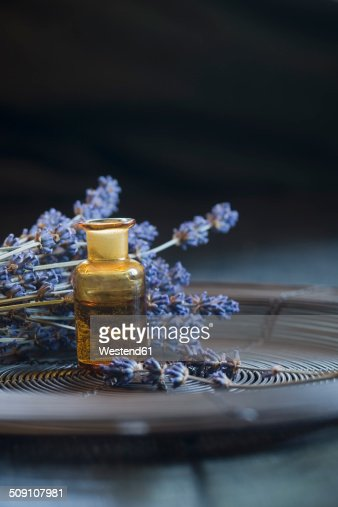 Lavender oil in a glass bottle, twigs of lavender, Lavandula angustifolia