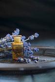 Lavender oil in a glass bottle, twigs of lavender, Lavandula angustifolia