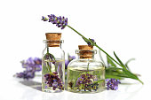 Lavender oil. Oil with lavender flower in a glass small bottle and sprigs of lavender on a white background. Botanical cosmetics concept