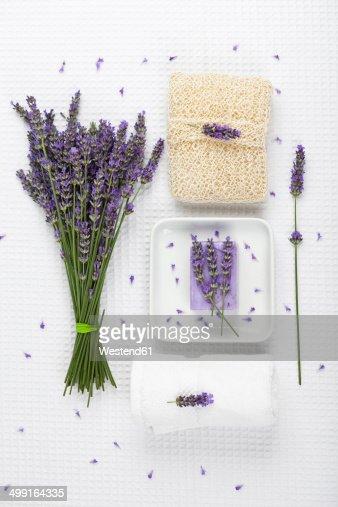 Lavender (Lavendula), white towel, lavender soap on soap basket and cactus fibre sponge