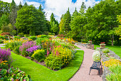 Lush summer Garden.