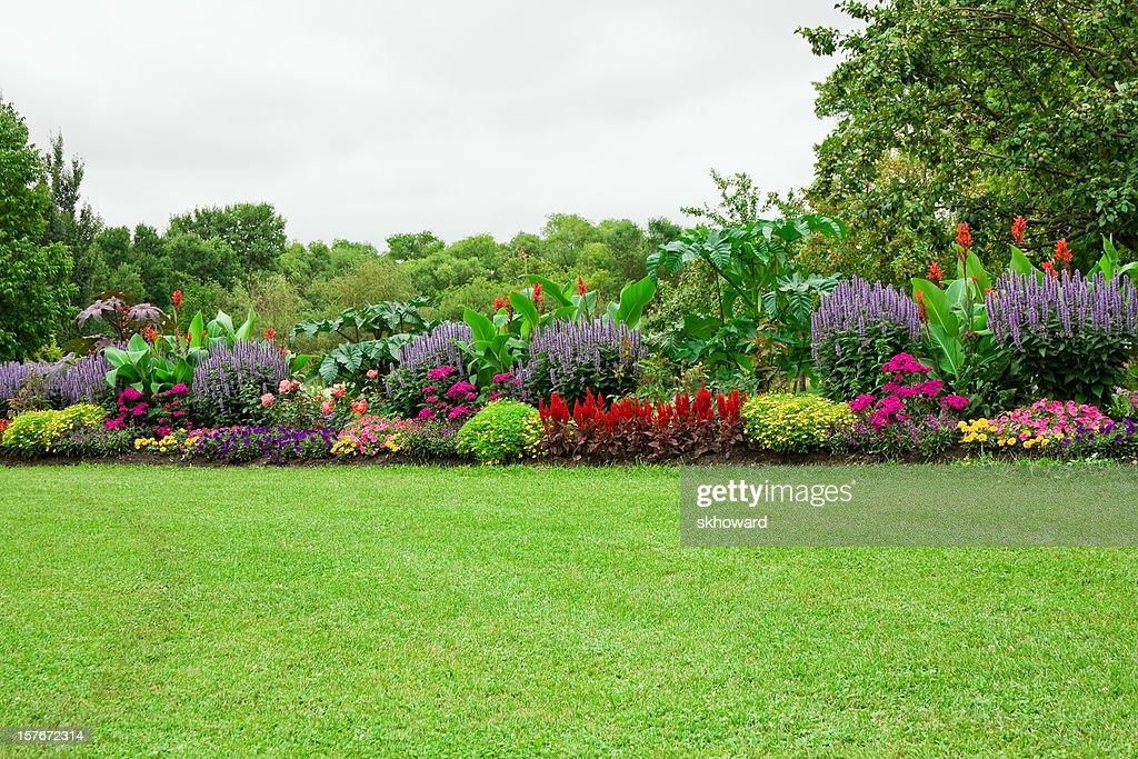 Pelouse Et Jardin Classique Photo Getty Images