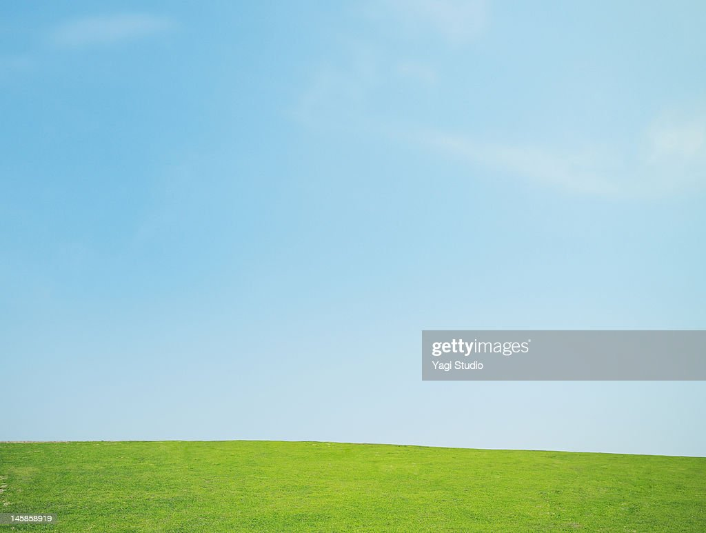 Lawn and the sky : Stock Photo