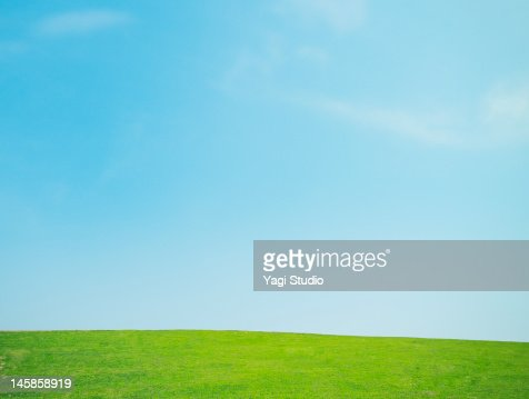 Lawn and the sky : Bildbanksbilder