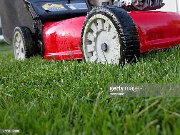 Lawn Machine on Green Grass
