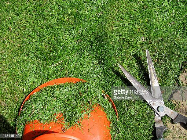 Lawn mower and garden shears on grass