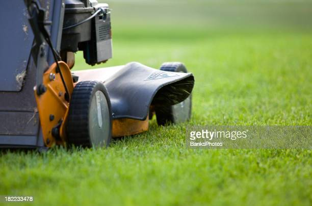 Lawn Mower Discharging Grass