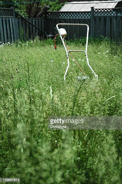 Lawn mower in backyard