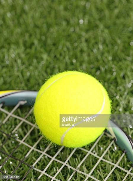 lawn tennis concept
