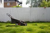 Lawnmower on lawn.